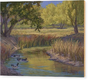 Duck Pond Wood Print by Jane Thorpe