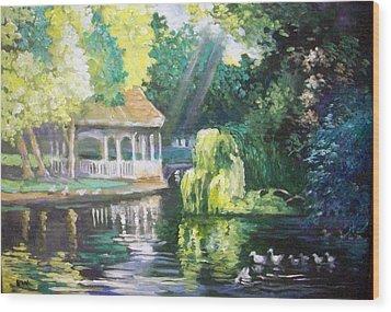 Duck Pond Stephens Green  Park Dublin Wood Print by Paul Weerasekera