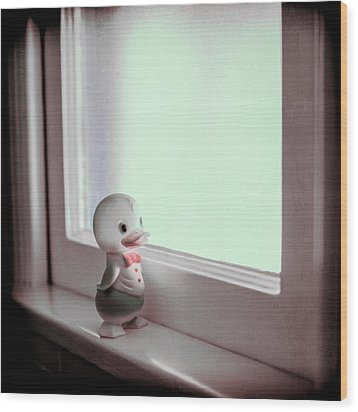 Duckie At The Window Wood Print