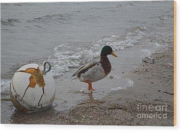 Duckie Duckie Wood Print