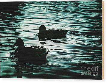 Duckies Wood Print by Arlene Sundby