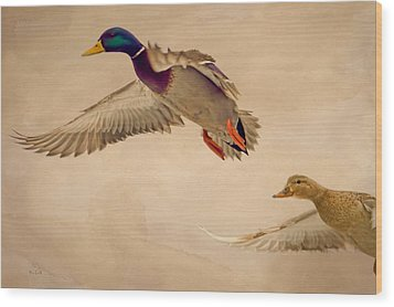 Ducks In Flight Wood Print by Bob Orsillo