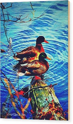 Wood Print featuring the photograph Ducks On A Log by Tara Potts