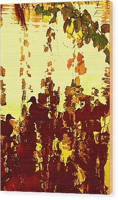 Ducks On Red Lake 2 Wood Print by Amy Vangsgard