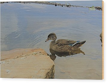 Ducky One Wood Print