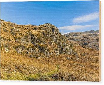 Duddon Valley Lake District Wood Print by Trevor Kersley
