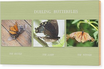 Dueling Butterflies Collage Wood Print by Margie Avellino