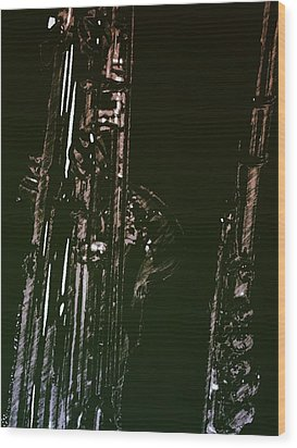 Wood Print featuring the photograph Duet by Photographic Arts And Design Studio