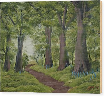 Duff House Walk Wood Print