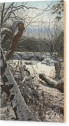 Duffins Creek 3 Wood Print