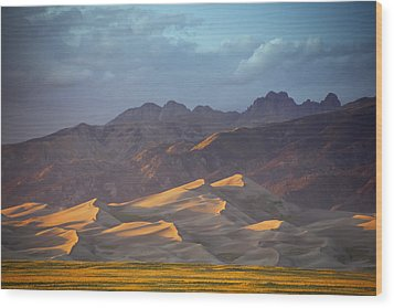 Dune Delight Wood Print by Morris  McClung