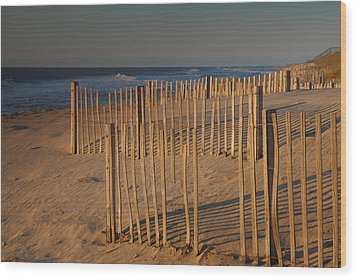 Dune Fences At First Light I Wood Print by Steven Ainsworth