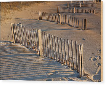 Dune Fences Early Morning Wood Print by Steven Ainsworth