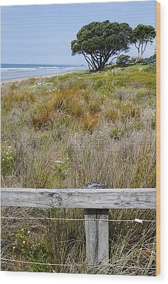 Dune Grass Wood Print by Les Cunliffe