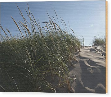 Dune Grass Wood Print by Tara Lynn