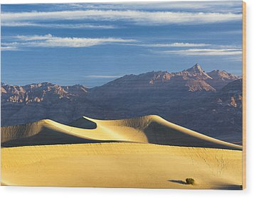 Wood Print featuring the photograph Dune Light by Patrick Downey