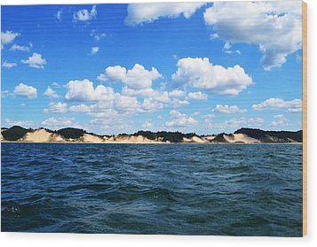 Dunes And Lake Michigan Wood Print by Michelle Calkins