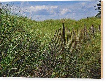 Dunes On Prince Edward Island Wood Print