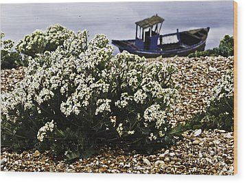 Dungeness Seascape Wood Print by Lesley Rigg
