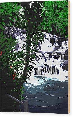 Dunns River Falls Jamaica Wood Print by MOTORVATE STUDIO Colin Tresadern