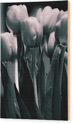 Wood Print featuring the photograph Duo-toned Tulip by Craig Perry-Ollila