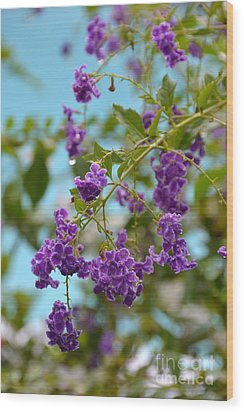 Wood Print featuring the photograph Duranta- Fresh Morning by Darla Wood