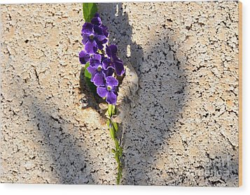 Wood Print featuring the photograph Duranta- Shadow Play 1 by Darla Wood
