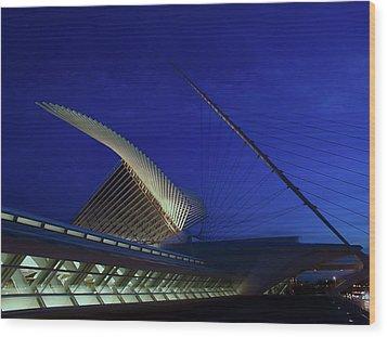 Wood Print featuring the photograph Dusk At The Calatrava by Chuck De La Rosa