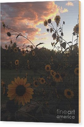 Dusk In Taos Wood Print by Polly Anna