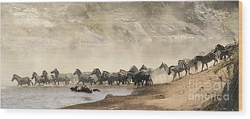 Wood Print featuring the photograph Dusty Crossing by Liz Leyden
