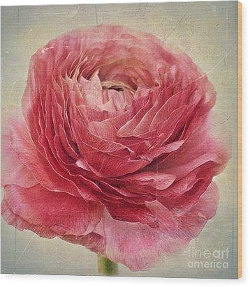 Dusty Pink Wood Print by Priska Wettstein