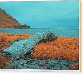 Dutch Harbor Alaska Wood Print by Yul Olaivar