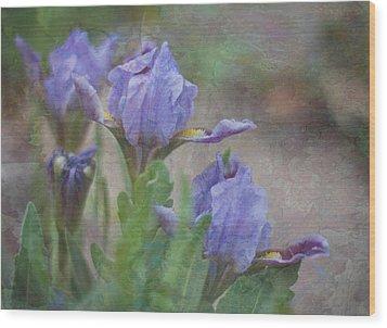 Dwarf Iris With Texture Wood Print by Patti Deters