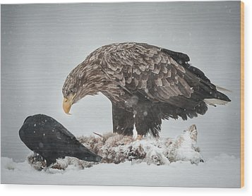 Eagle And Raven Wood Print by Andy Astbury