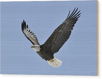 Eagle Class Wood Print by RJ Martens
