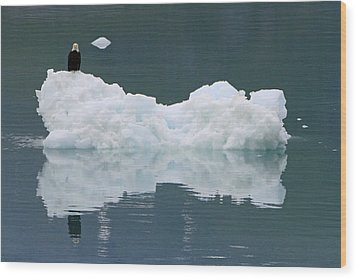 Eagle On Ice Wood Print by Shoal Hollingsworth