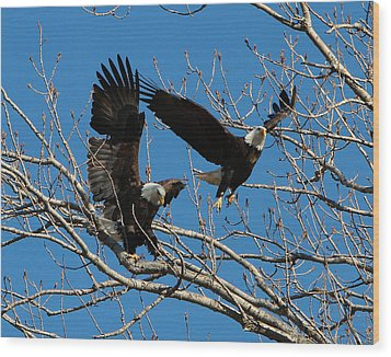 Wood Print featuring the photograph Eagles by John Freidenberg