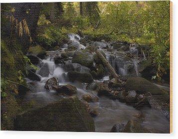 Wood Print featuring the photograph Early Autumn Cascades by Ellen Heaverlo
