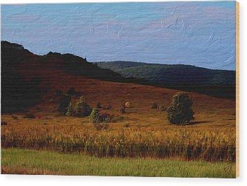 Early Autumn Field Wood Print