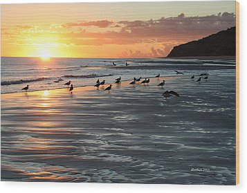 Early Birds Wood Print by Dick Botkin