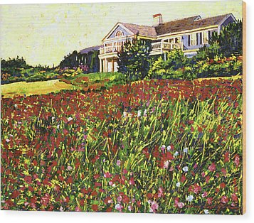 Early Evening At Cape Cod Wood Print by David Lloyd Glover