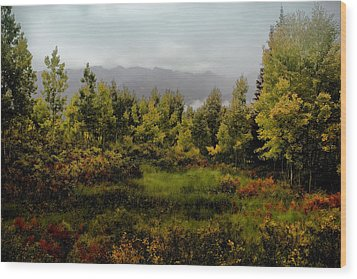 Wood Print featuring the photograph Early Fall On Kebler Pass by Ellen Heaverlo