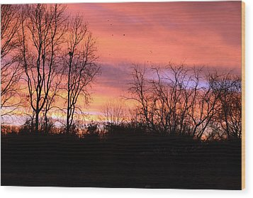 Early Morning Color Canvass Wood Print by Wanda Brandon
