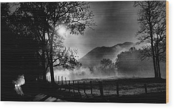 Early Morning Drive. Wood Print