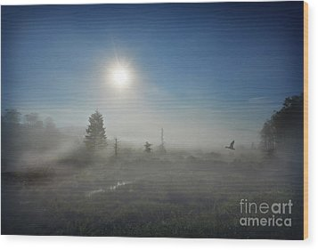 Early Morning Fog At Canaan Valley Wood Print by Dan Friend