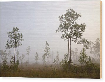 Early Morning Fog Wood Print by Rudy Umans