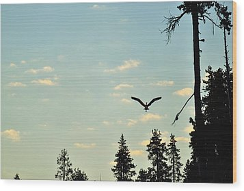 Early Morning Heron In Silhouette Wood Print by Rich Rauenzahn