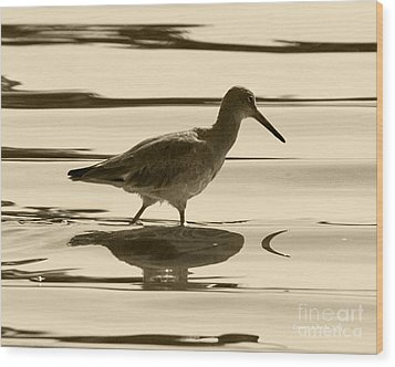 Early Morning In The Moss Landing Harbor Picture Of A Willet Wood Print