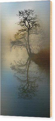 Early Morning Wood Print by manhART
