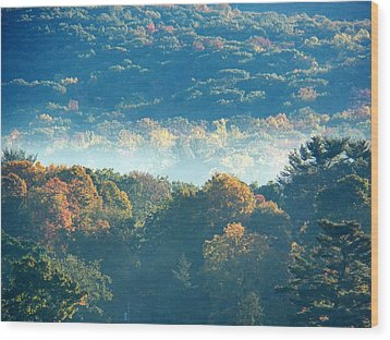 Wood Print featuring the photograph Early Morning by Steven Huszar